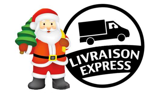 LIVRAISON_EXPRESS_NOEL