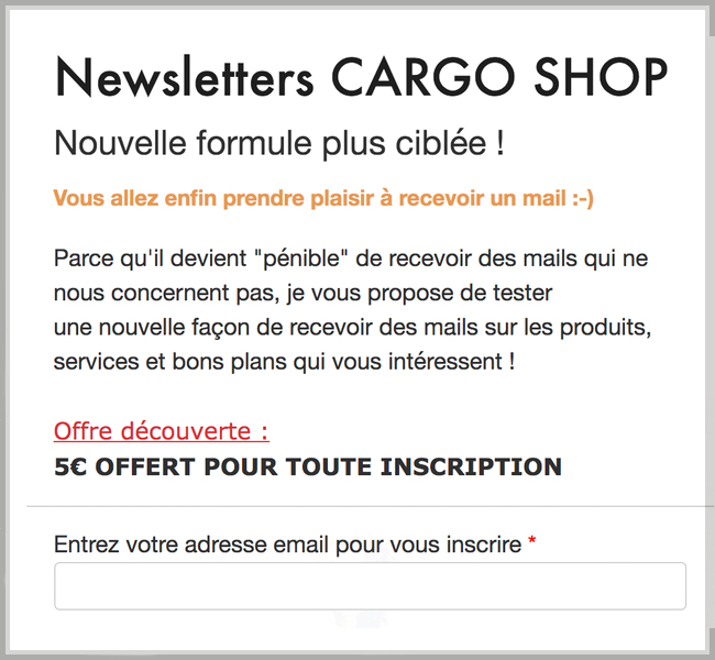 newsletter_-_copie
