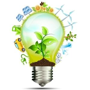 2093505-10-idees-de-business-dans-l-ecologie